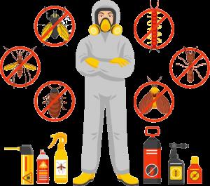 Pest Control Service 3